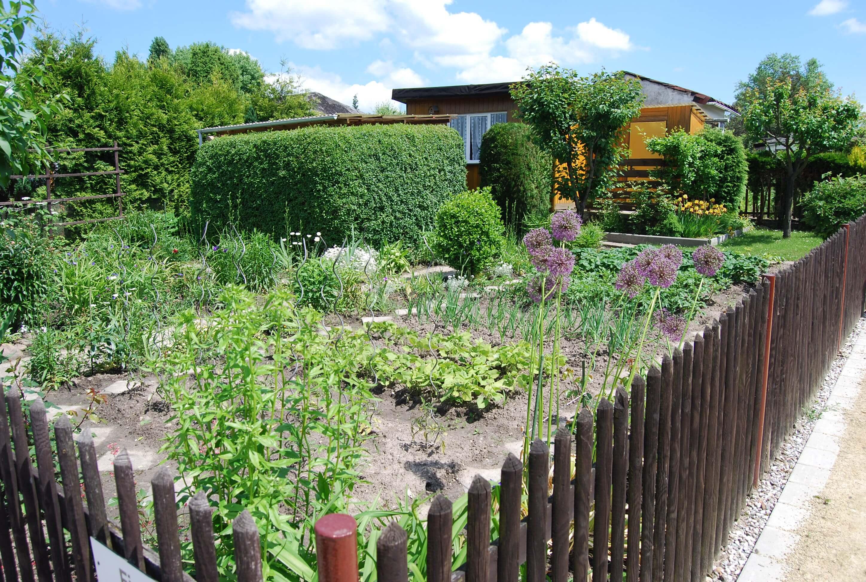 Studie 532557 Kleingärten In Den 131 Größten Städten Deutschlands