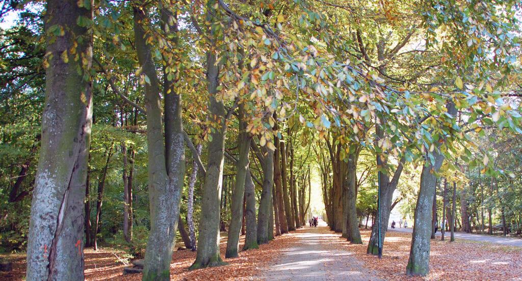 Spaziergang in Kolberg