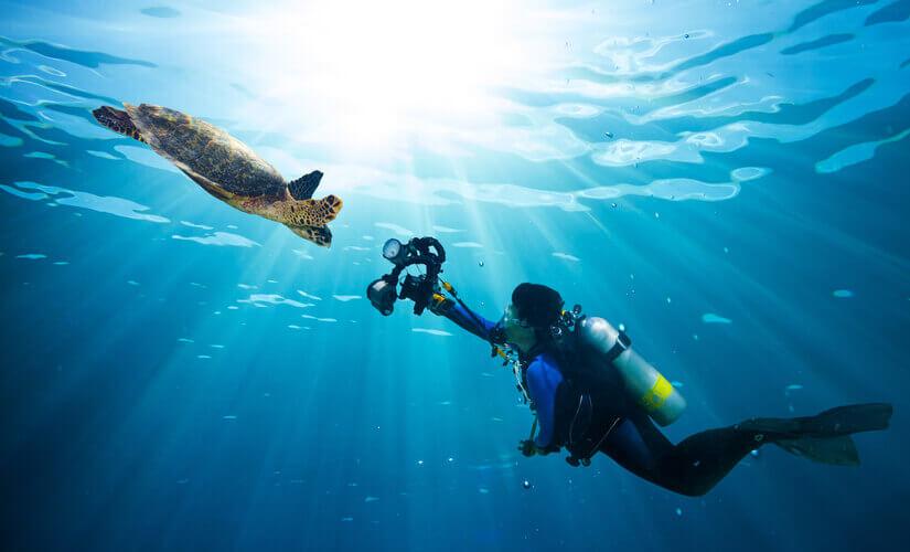 Ein Mann filmt eine Schildkröte beim Tauchen