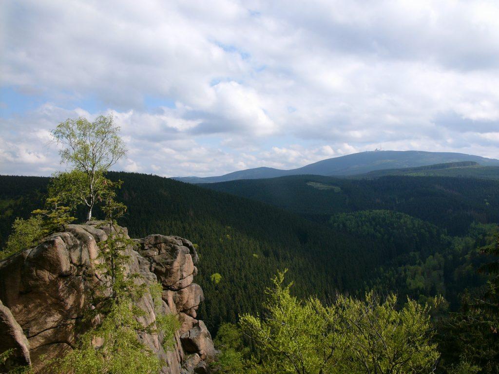 Überblick über den Harz