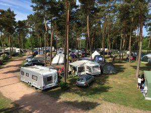 Campingpark Haddorfer Seen Kiefernhain Foto