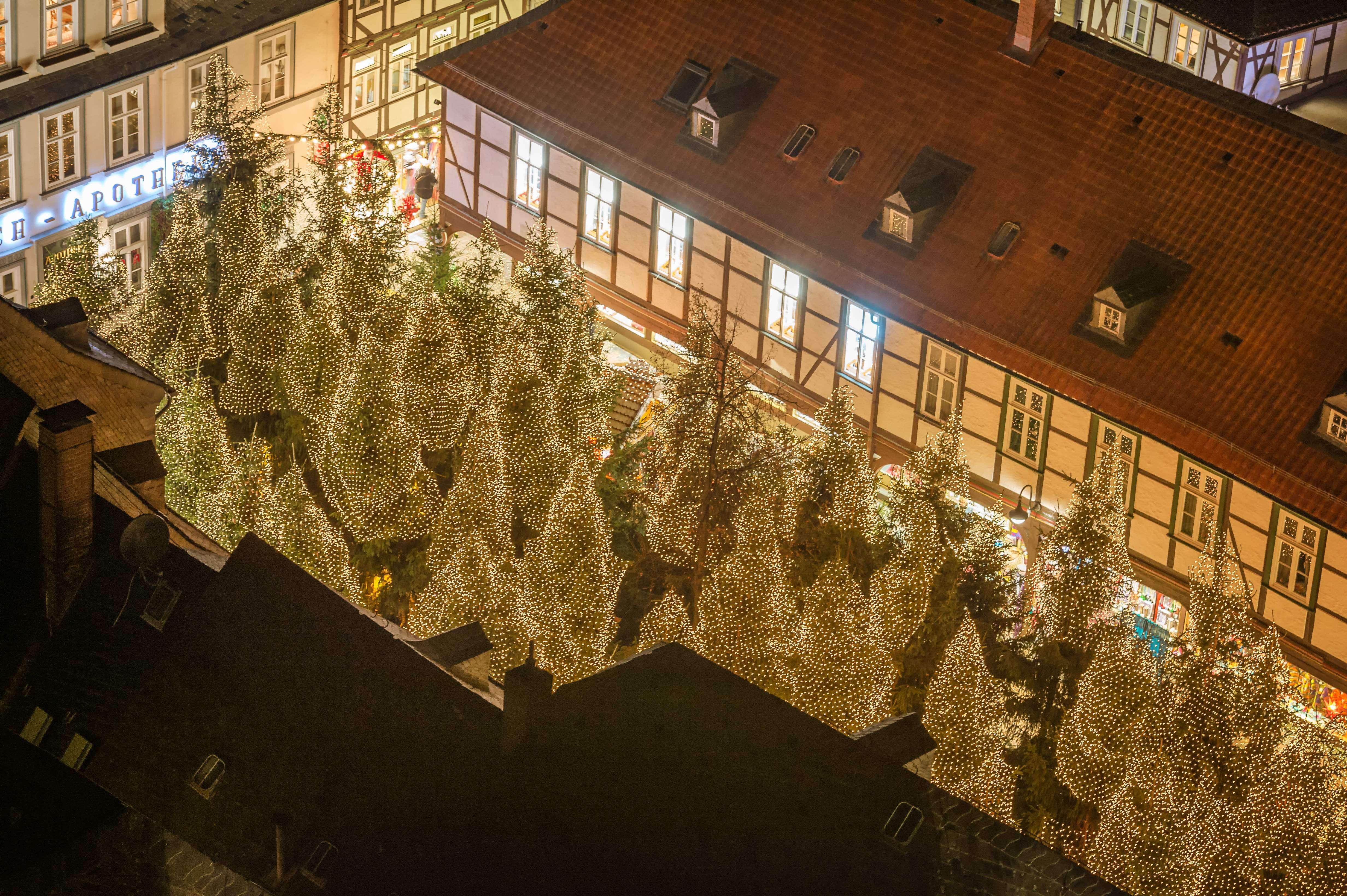 Weihnachtsmarkt, Weihnachtsmänner, Weihnachtsbäume, Hütte, Glühwein, Essen, Weihnachtswald Goslar ©GOSLAR marketing gmbh