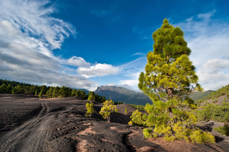 Lavalandschaft Cumbre Nueva auf La Palma