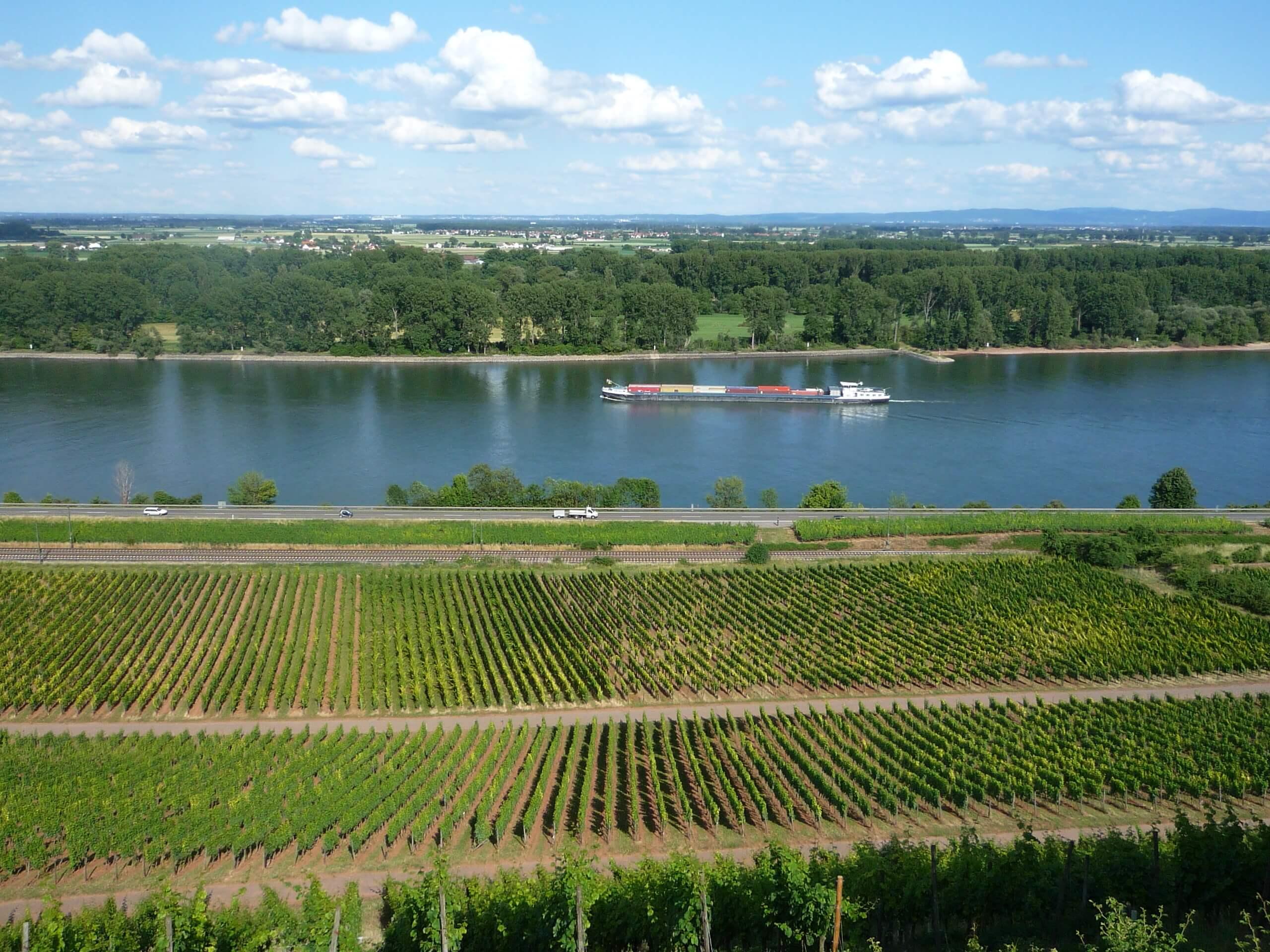 Panorama von einem Weinhang aus
