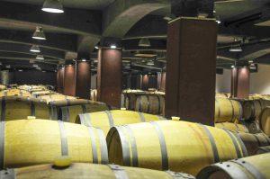 Blick in einen Weinkeller in Bulgarien
