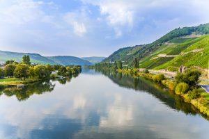 Bild Die besten Gebiete für Spargel in Deutschland