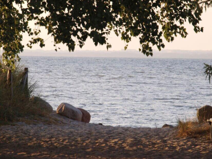 Blick Richtung Strand der Ostsee