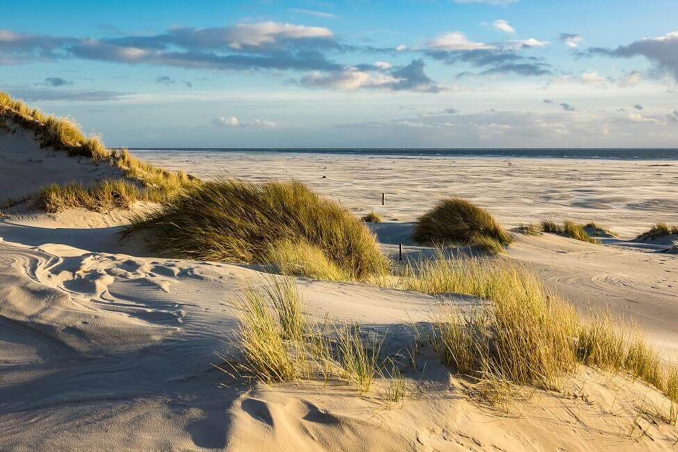 Bild Urlaub an der Nordsee