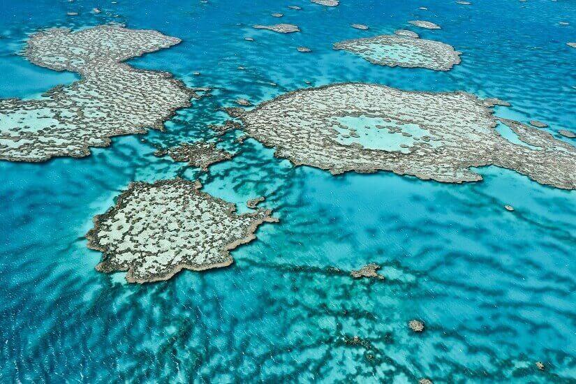 Bild Das Great Barrier Reef aus der Luft