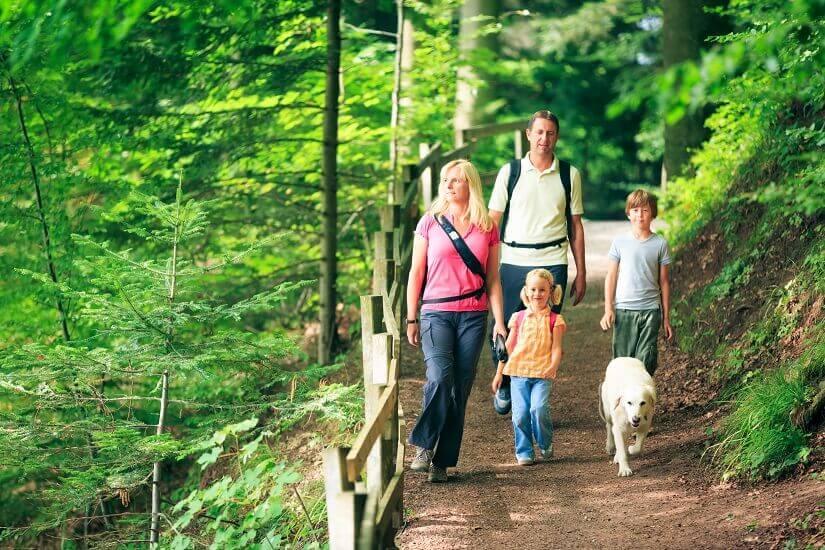 Bild Wanderurlaub mit der ganzen Familie
