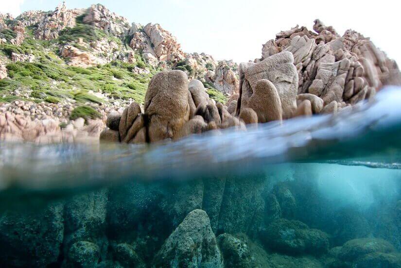 Bild Unterwasserwelt vor Sardinien