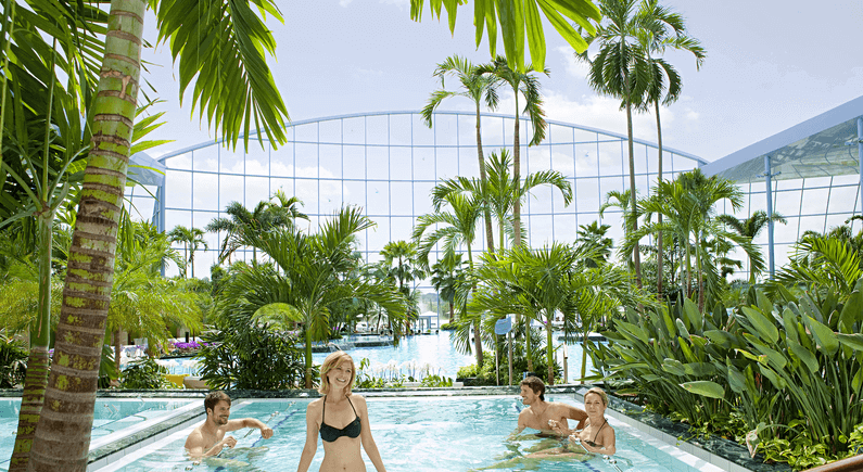 Bild Entspannung unter Palmen in der Thermen & Badewelt Sinsheim