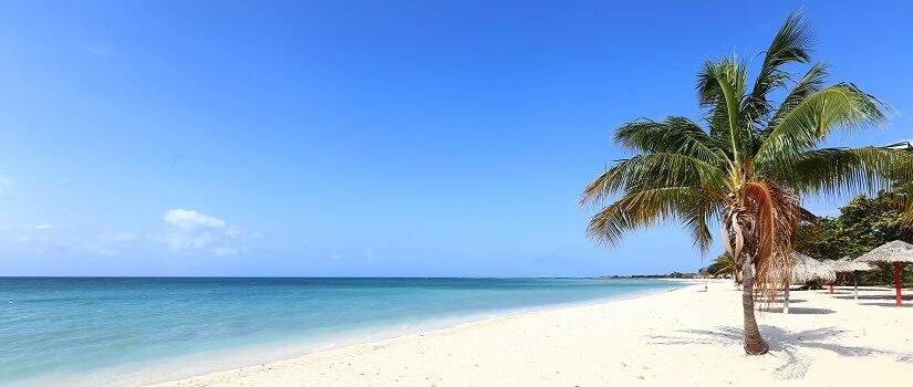 Playa Ancon, weißer Strand mit Palme auf Kuba