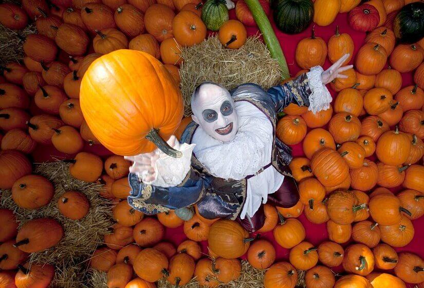 Bild Halloween im Europa-Park