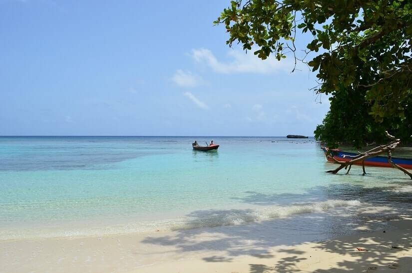 Bild Treasure Beach, Jamaika
