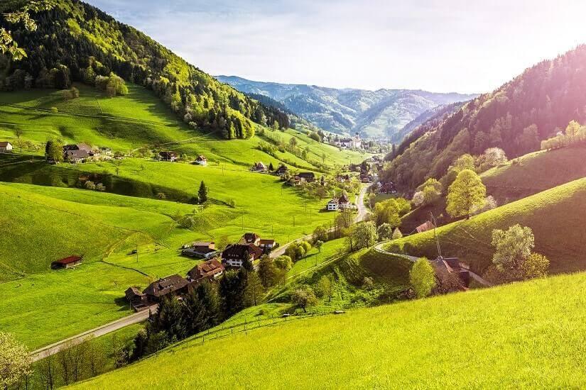Bild Schwarzwald im Frühling