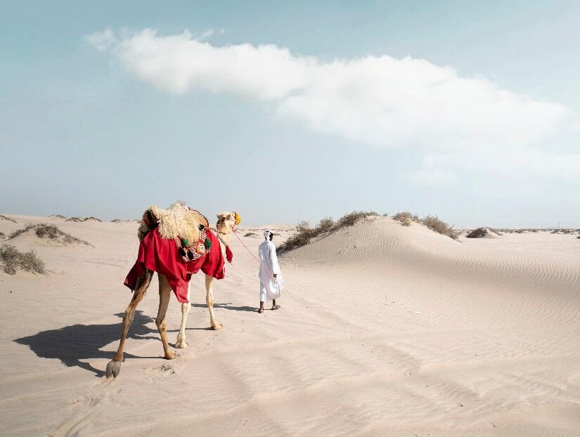 1547724564_Katar Wüstensafari mit dem Kamel
