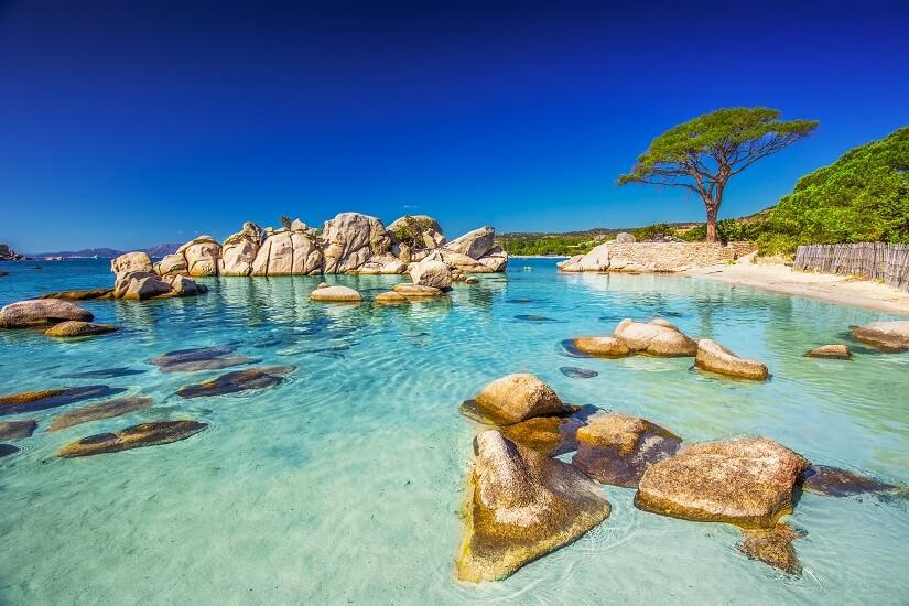 Bild Palomaggia Beach auf Korsika