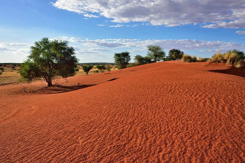 Kalahari-Wüste, Namibia