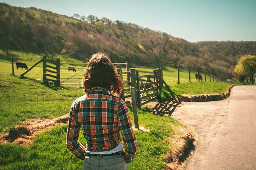 Arbeit auf der Ranch im Sabbatical