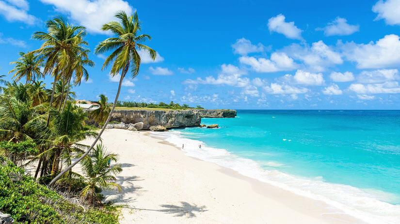 Flitterwochen Barbados