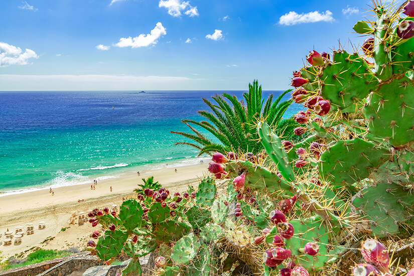 Strand von Esquinzo auf Fuerteventura