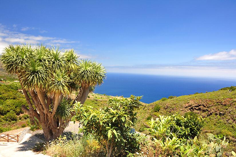 Blick von La Palma