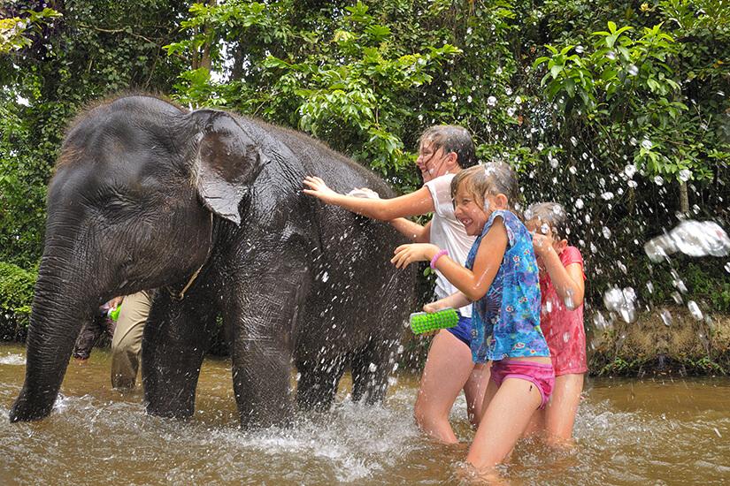 Babyelefant beim Baden