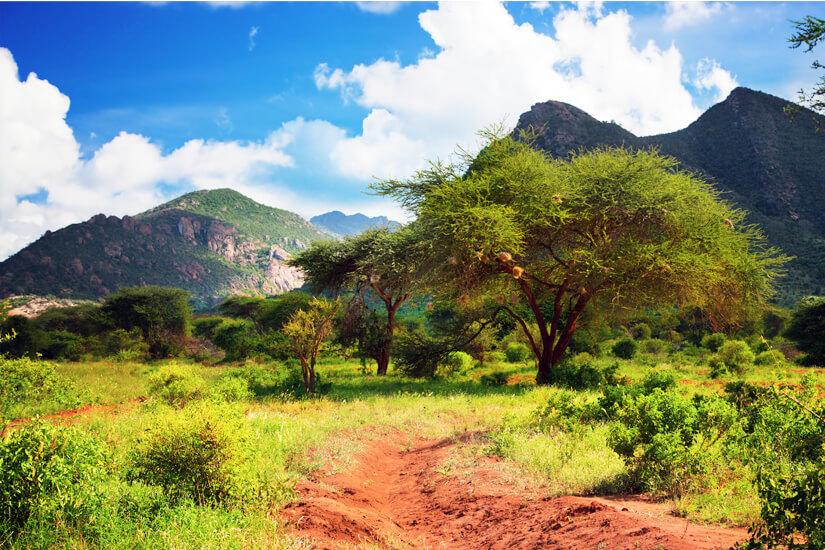 Tsavo Nationalpark