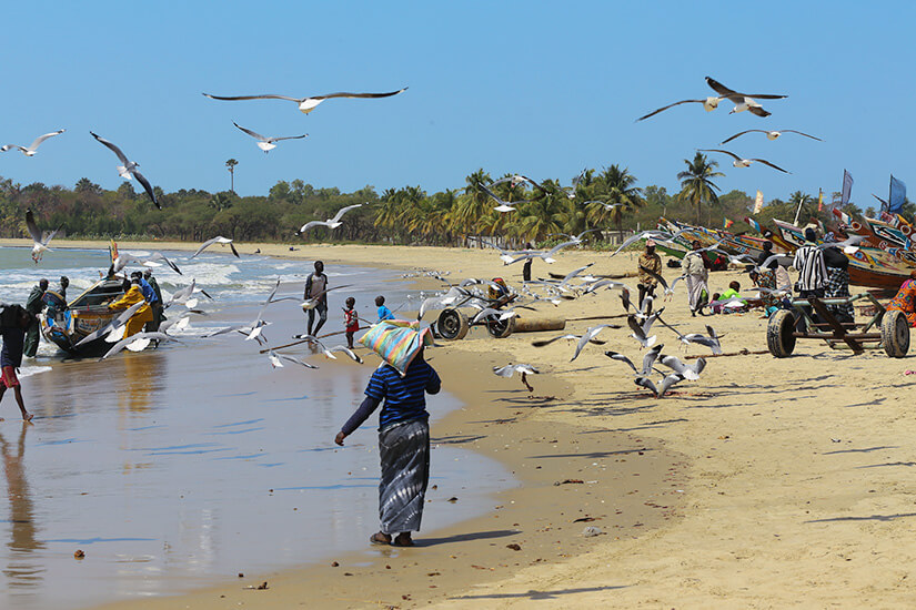Das echte Strandleben in Gambia