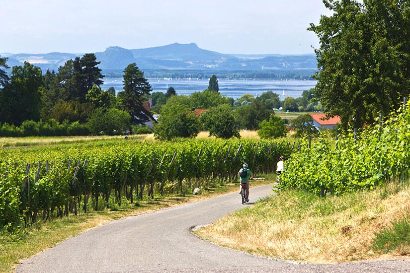 Mit dem Fahrrad am Bodensee unterwegs