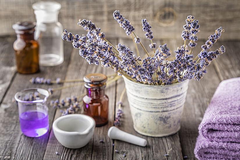 Duft aus Lavendel herstellen