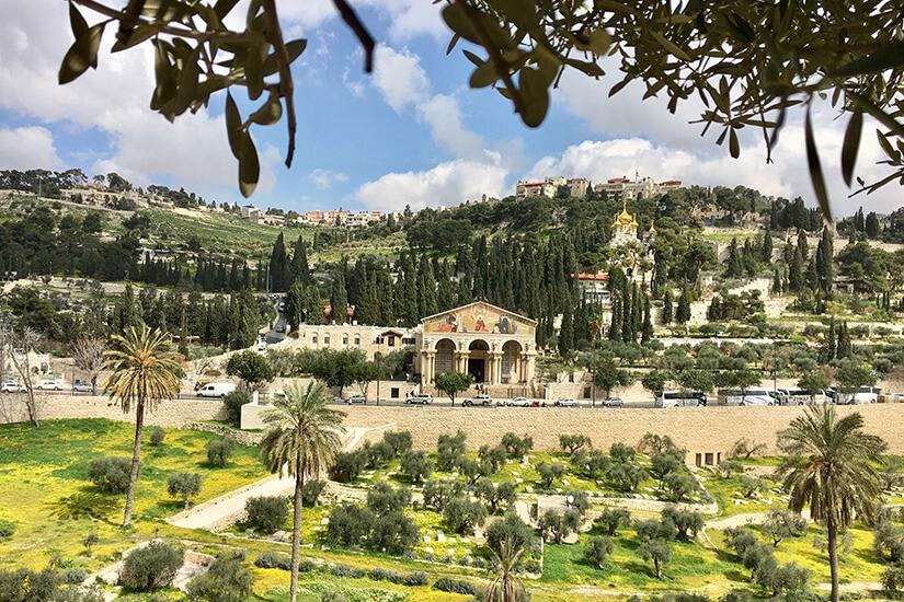 Ölberg mit Garten Gethsemane