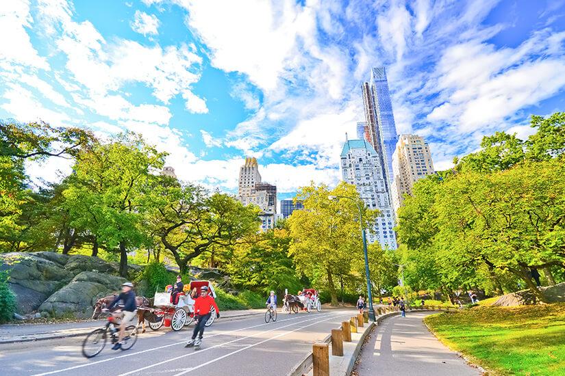 Radfahrer und Skater im Central Park