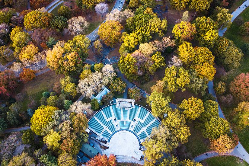 Central Park Platz für Ausflüge und Events