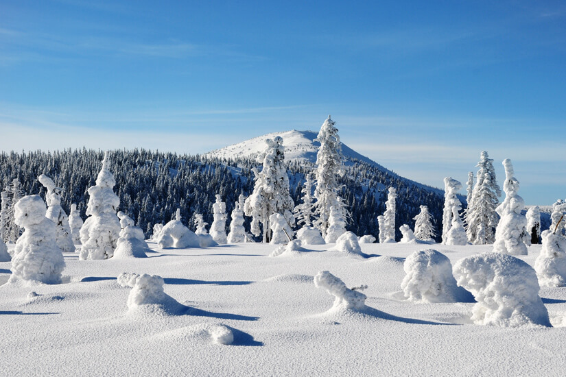 Verschneite Landschaft im Riesengebirge