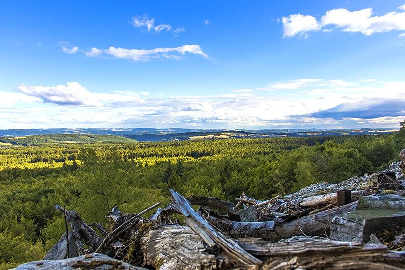 Blick von der Mörschieder Burr im Nationalpark Hunsrück-Hochwald