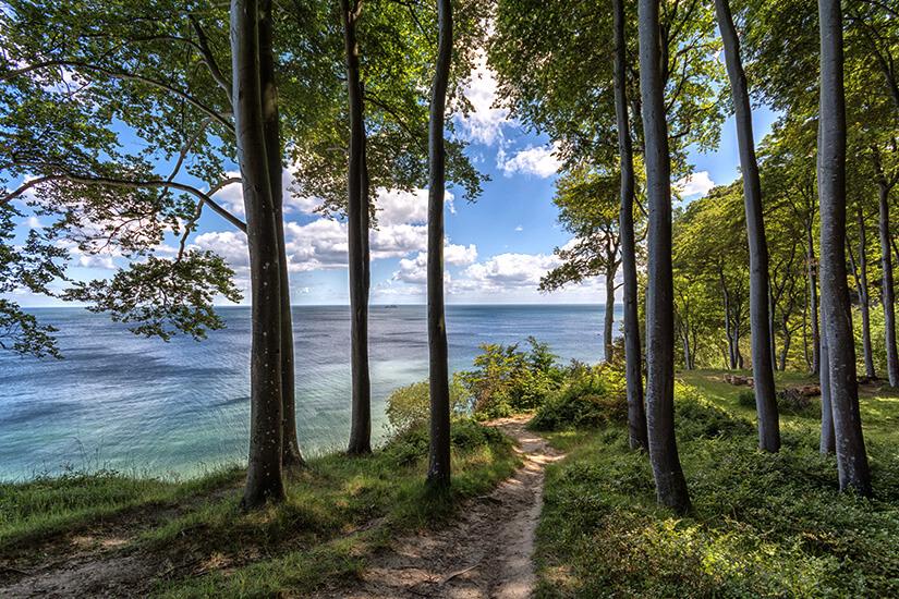 Nationalpark Jasmund auf Rügen