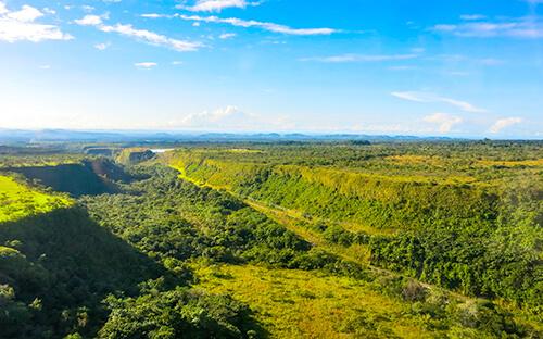 Dschungel rund um Boquete erkunden