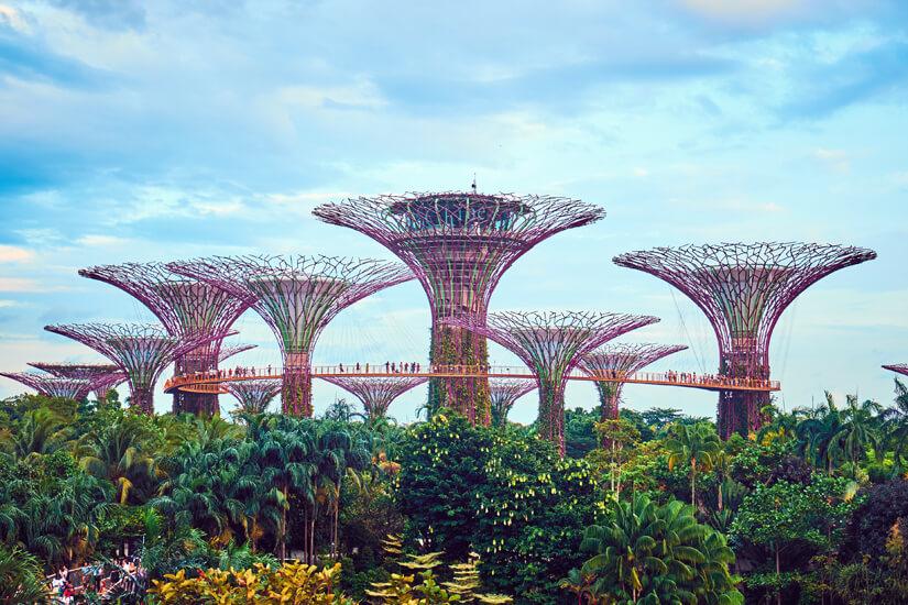 Einer der längsten Linienflüge weltweit endet in Singapur