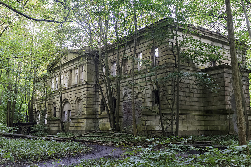 Dicht bewachsenes Schloss Dwasieden nahe Sassnitz