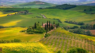 Typisch Toskana Hügel und Zypressen