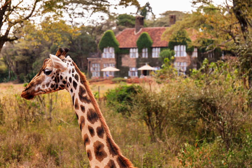 Langatta Giraffe Center
