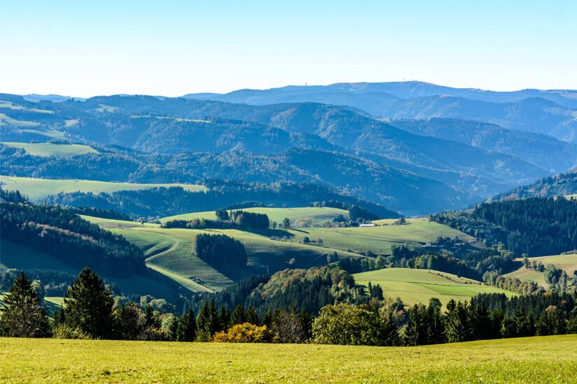 Blick auf den Feldberg im Schwarzwald