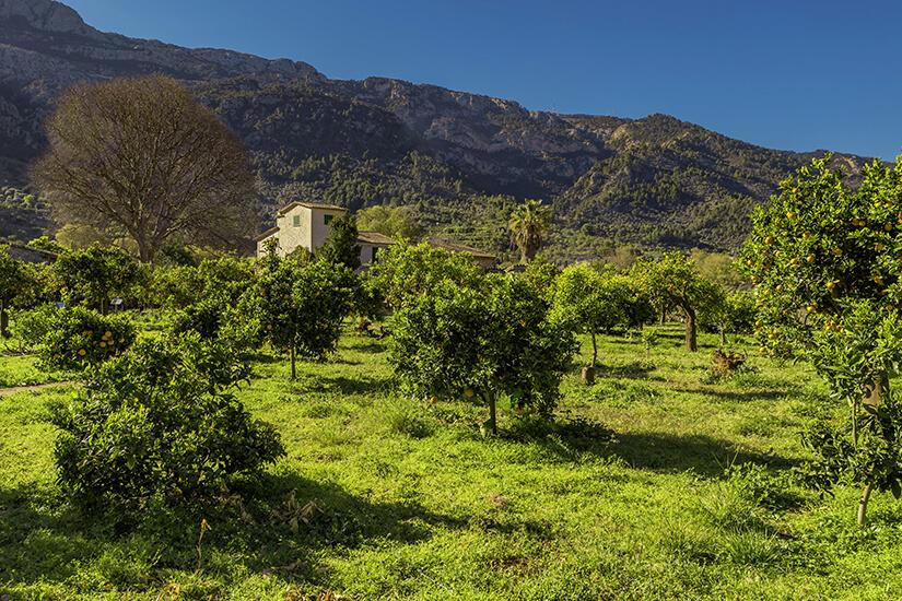 Schön gelegene Finca auf Mallorca