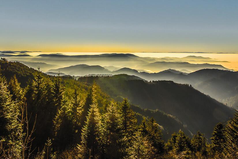Der Schwarzwald hat ein besonderes Heilklima