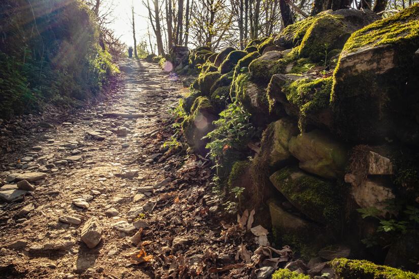 Pilgerreise durch die Natur