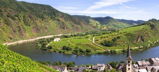 Top 10 Weinanbaugebiete der Welt