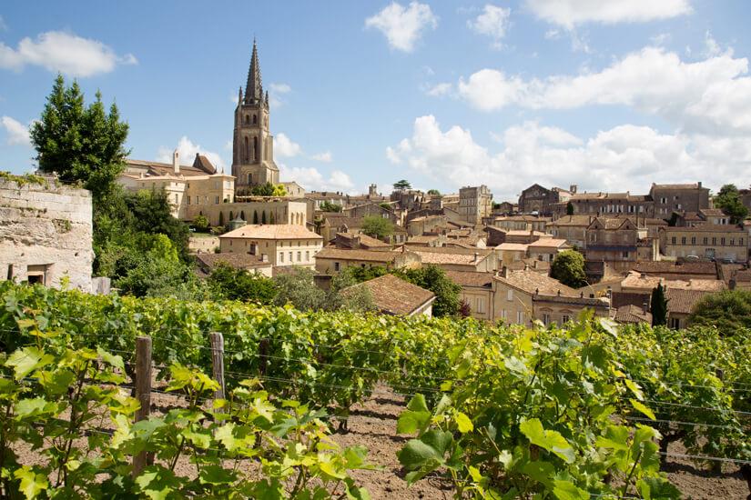 Weinanbau in Bordeaux, Frankreich