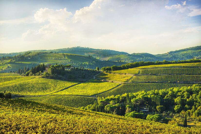 Aus Chianti in der Toskana kommt der gleichnamige Wein